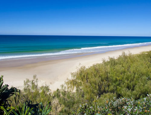 5 Tips for Enjoying a Car-Free Stay in Noosa